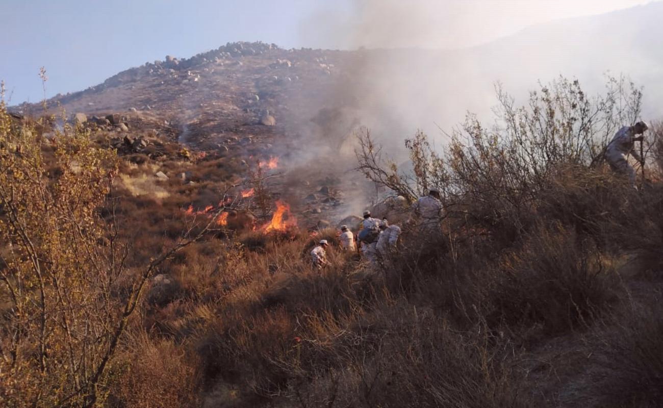 Combaten tres incendios forestales en Ensenada