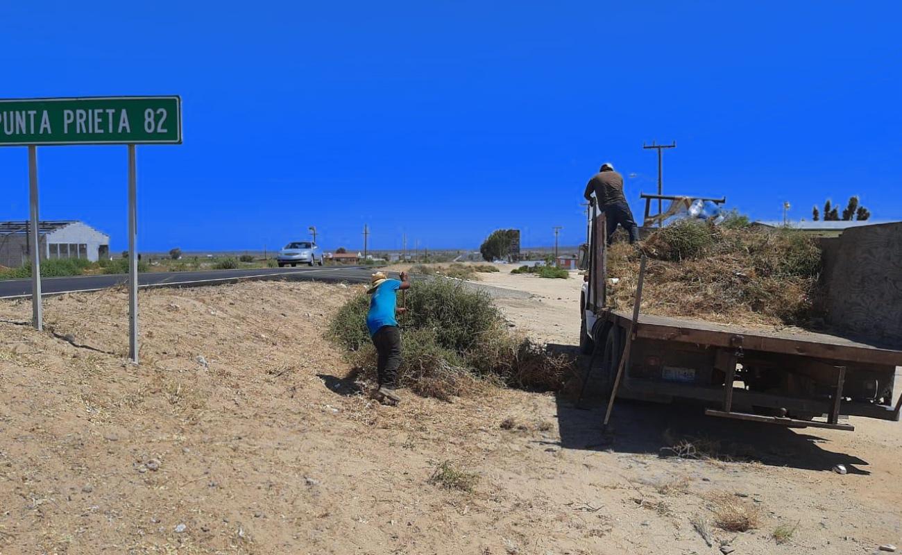 Recolectan más 80 toneladas de basura en delegaciones de Ensenada