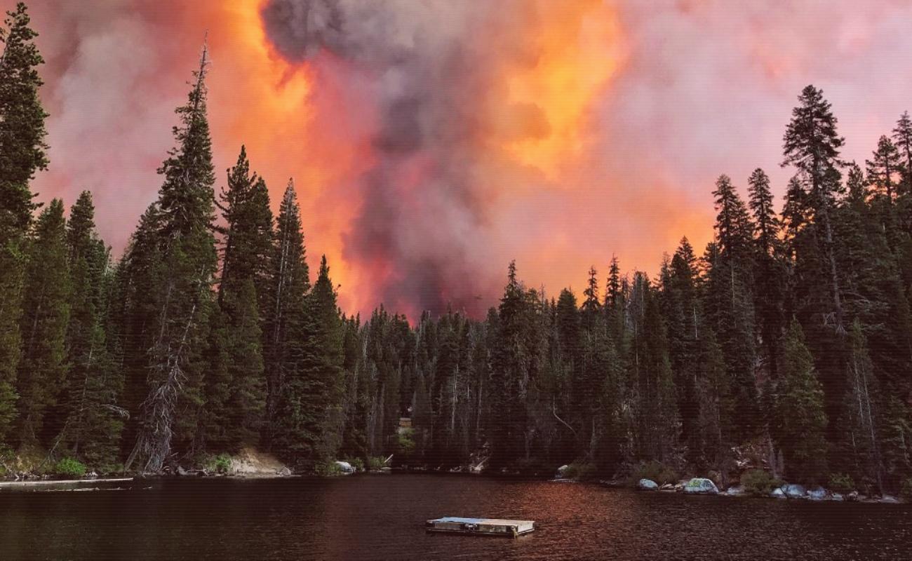 Fuera de control incendios forestales en San Diego y Los Ángeles