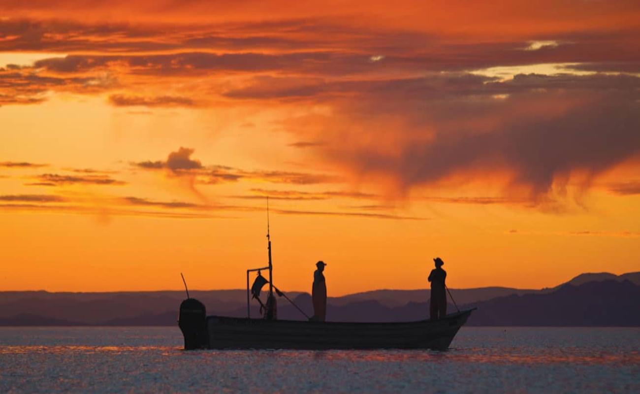 Apoyan productividad y cadena de valor de la pesca en Bahía de los Ángeles