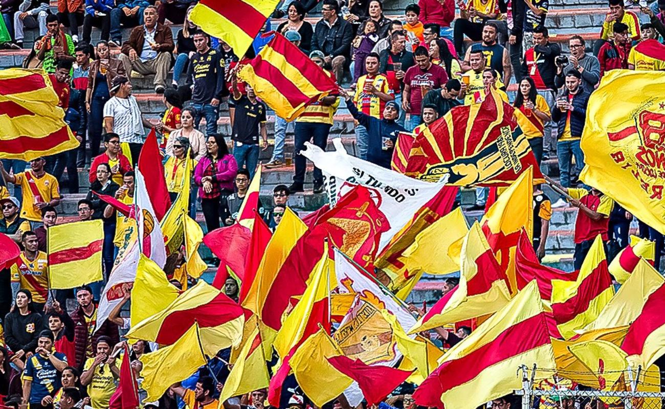 Confirman éxodo de Monarcas Morelia a Sinaloa