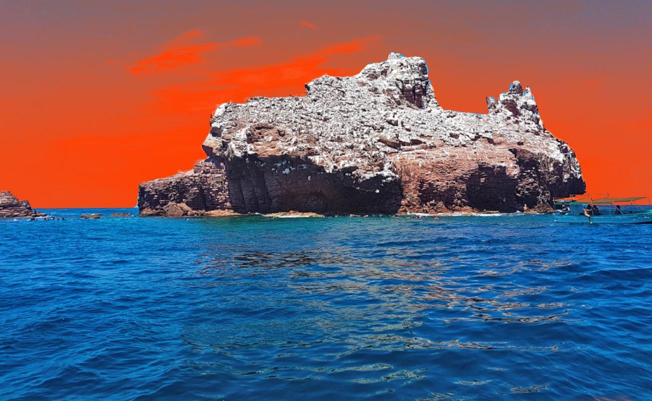 Peligra el Golfo de California como Patrimonio Mundial de la Humanidad