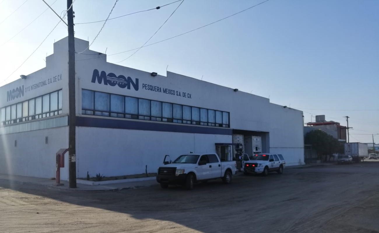 Por fuga de amoniaco y no activar protocolo, clausuran pesquera en Ensenada