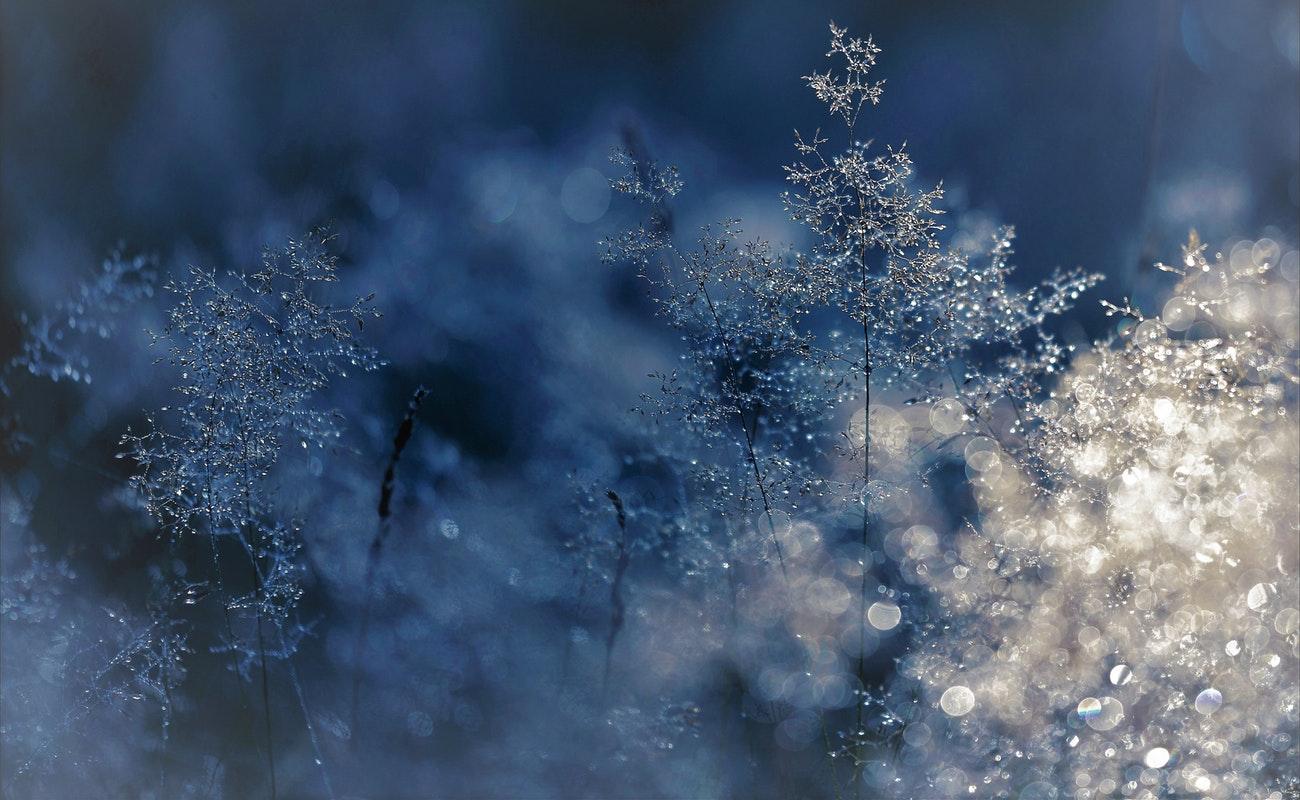 Descartan muertes por hipotermia en la región ante intenso frío