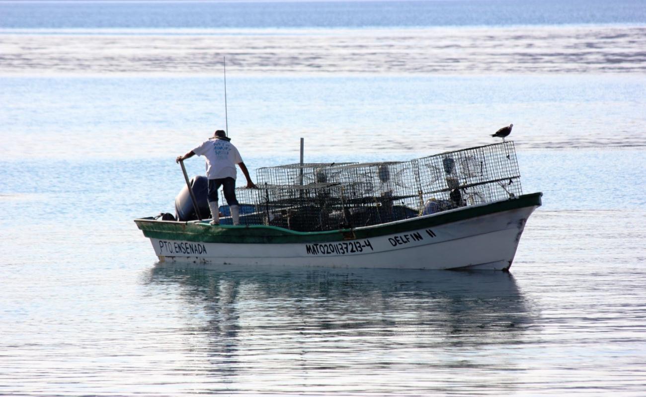Inicia capacitación a pescadores ribereños y prestadores de servicios turísticos
