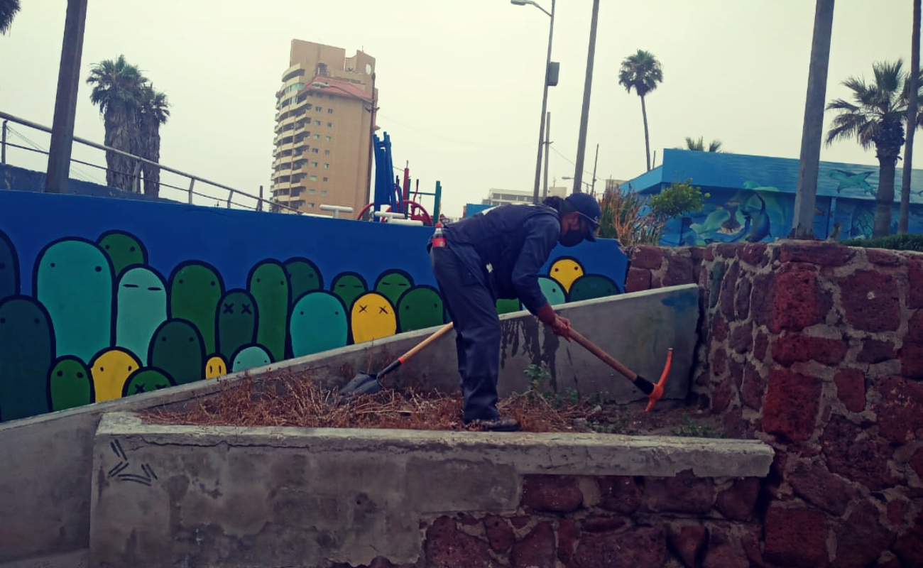 """Realizan mantenimiento al Parque """"Abelardo L. Rodríguez"""" de Rosarito"""
