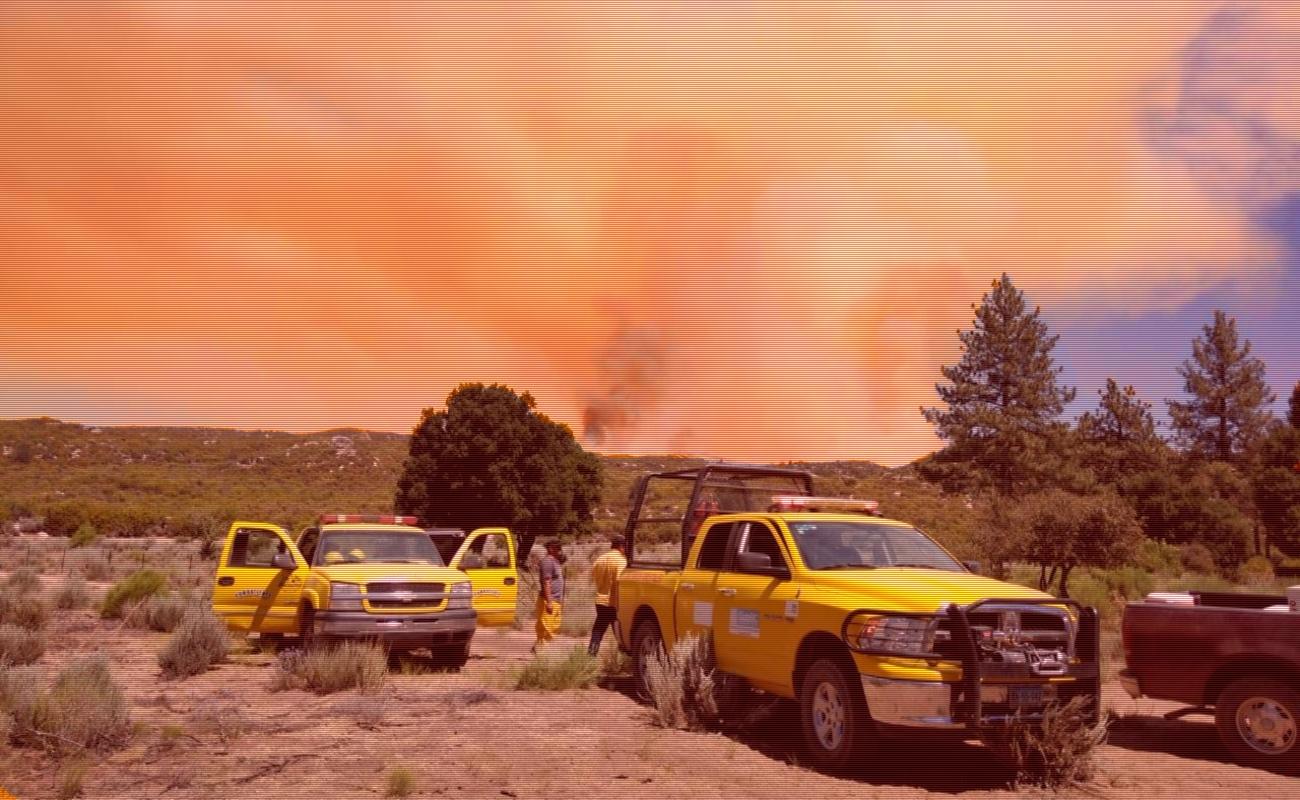 Sin sofocar incendio forestal en inmediaciones de Sierra de Juárez