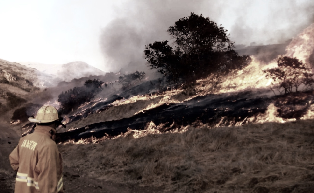 Incendio forestal obliga al cierre de la carretera escénica Tijuana - Ensenada