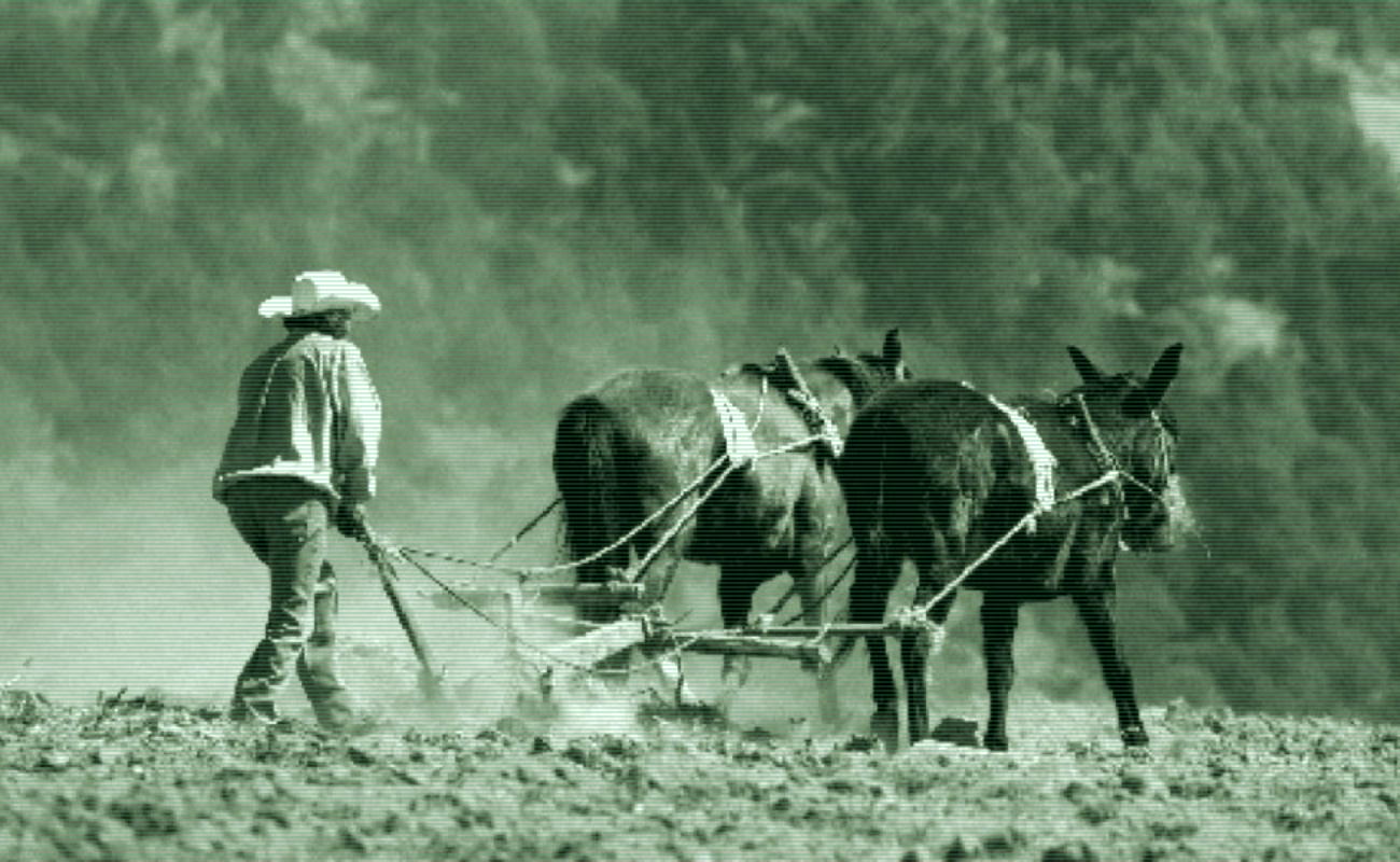 México en tránsito hacia la agroecología