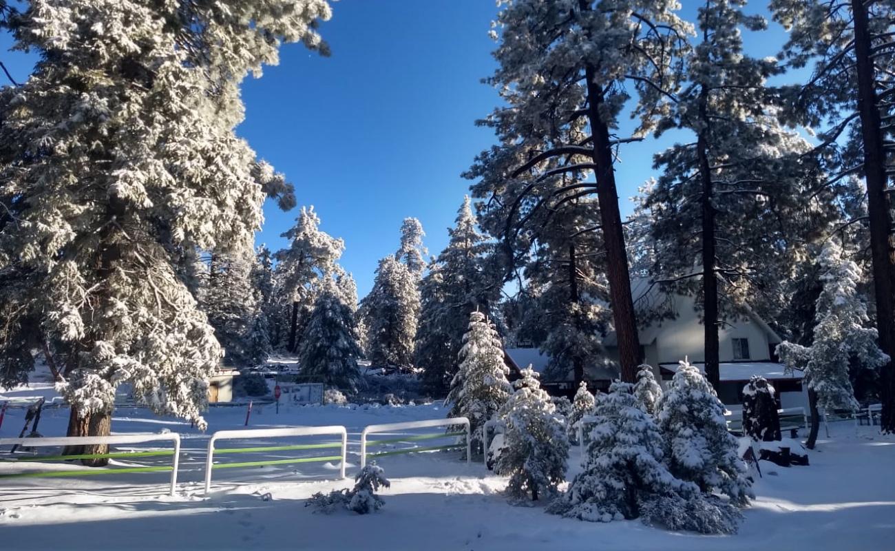 Emiten recomendaciones por frío y nieve en Sierra de San Pedro Mártir
