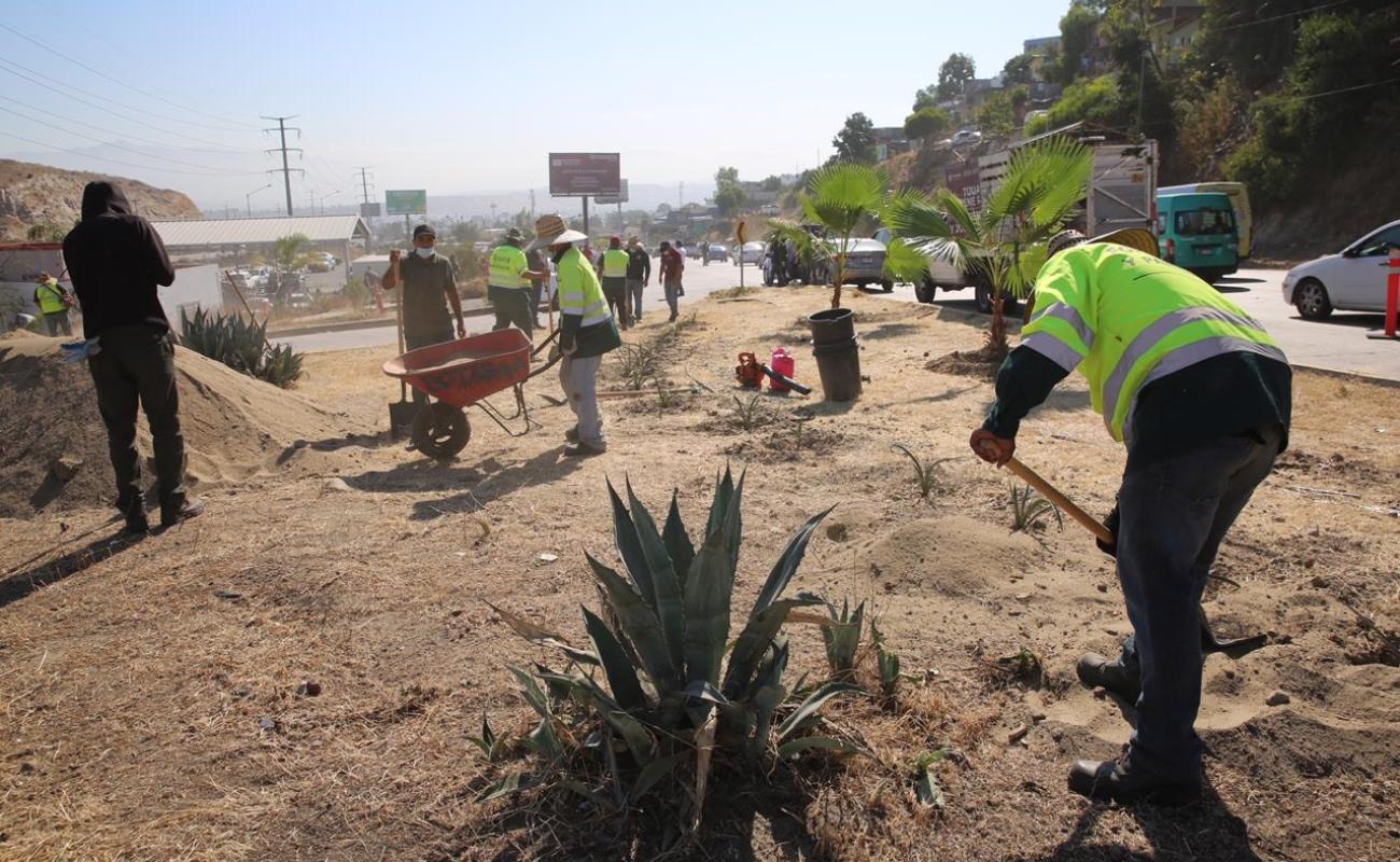 """Retiran 250 toneladas de basura durante jornada """"Sábado Verde"""""""