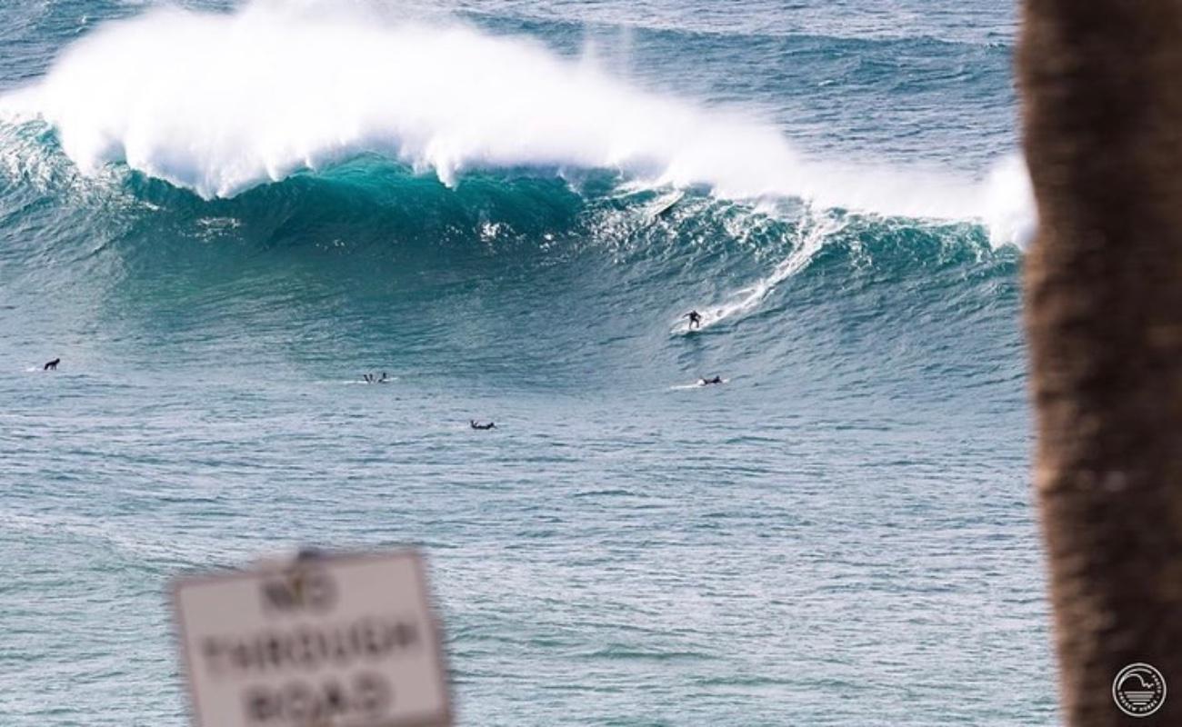 Adolescente muere por ataque de tiburón en Australia