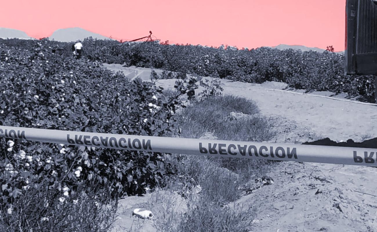 Piloto murió calcinado tras desplomarse su aeronave en Mexicali
