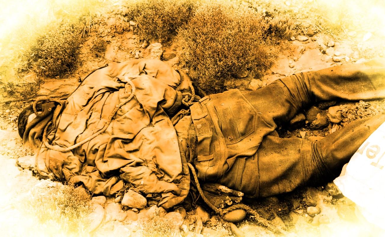 Localizan tres cuerpos en descomposición en San Quintín