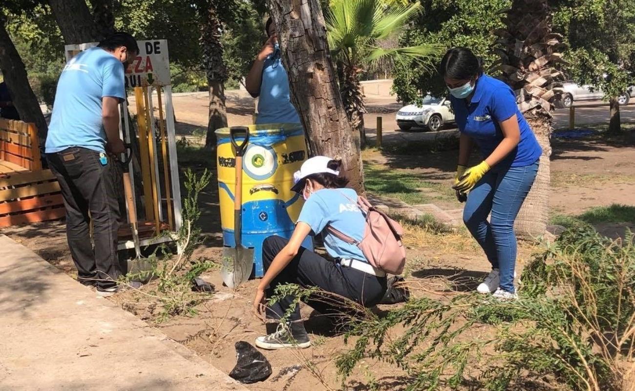 Reforestan áreas de Parque Morelos con más de mil árboles
