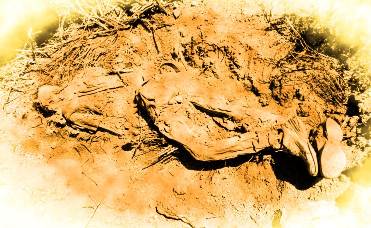 Confirman hallazgo de restos de ocho personas en Valle San Pedro